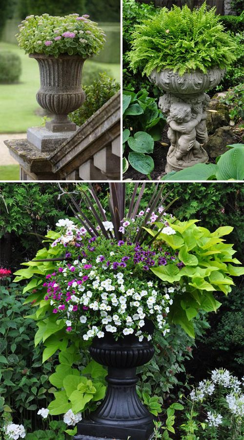 17 Beautiful Container Garden Ideas And Plant Pots Garden Containers Traditional Garden Garden Urns