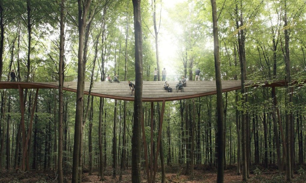 Spiraling Treetop Walkway Gives Visitors A Bird S Eye View Of A Danish Forest Landscape Architecture Danish Architecture Architecture