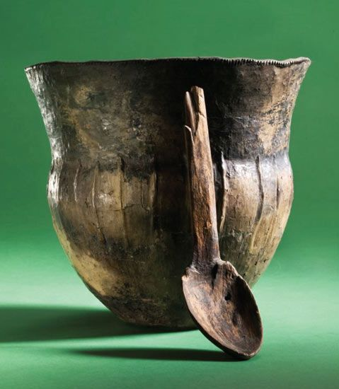 Residues In 6 000 Year Old Cooking Pots Ancient Ancient Pottery Stone Age