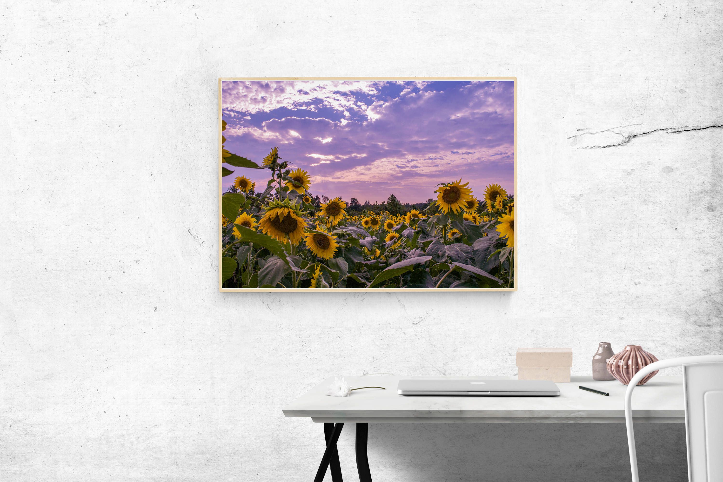 Sunflower Field Photograph Print, Nature Photography, Flower Print, Flower Photography,