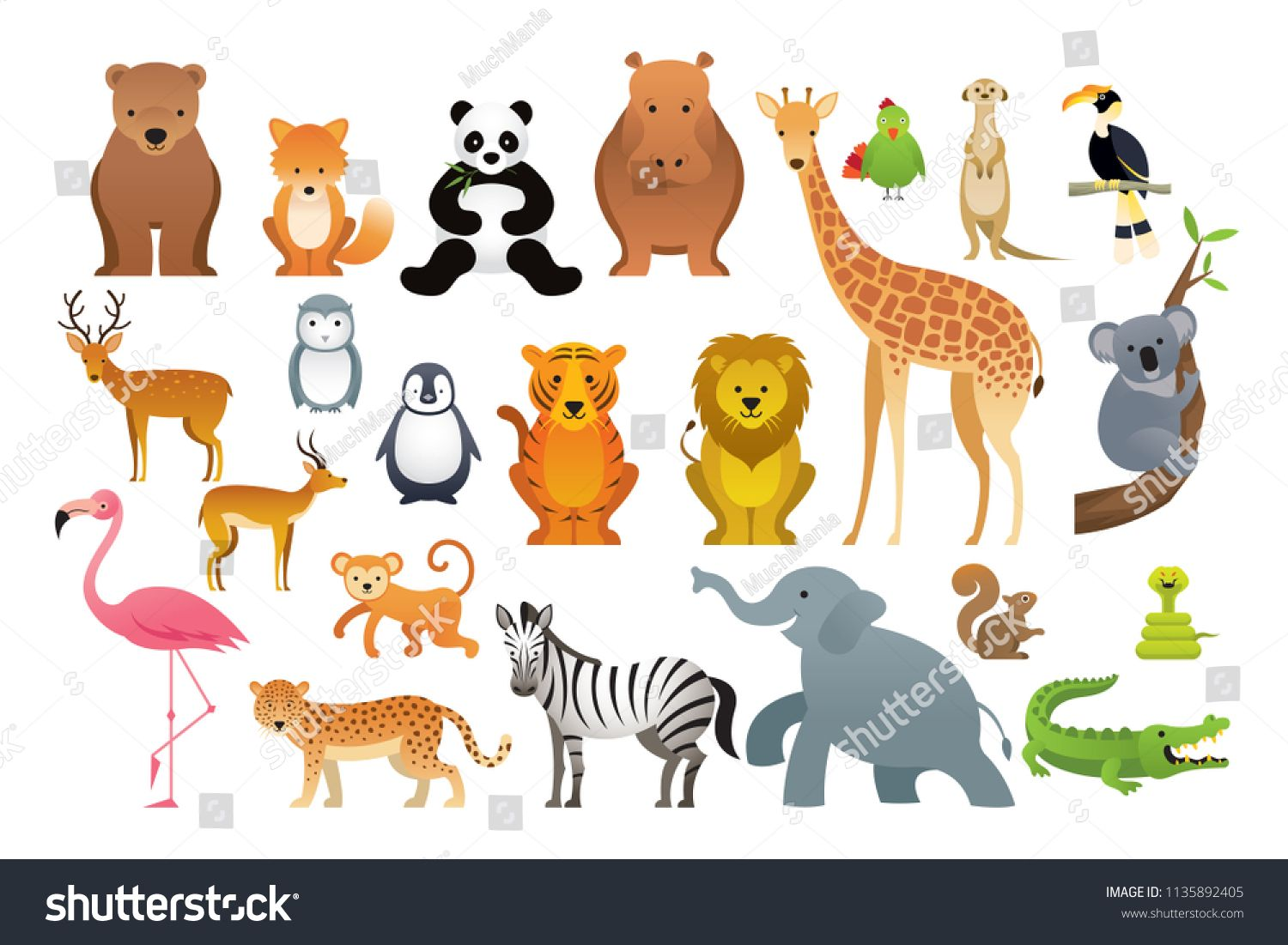 Wild Animals Vector Set, Zoo, Safari, Front view and Side ViewSet#Zoo#Vector #Wild