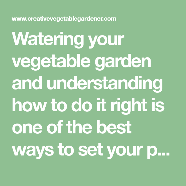 Secrets To Watering Your Vegetable Garden The Right Way 640 x 480