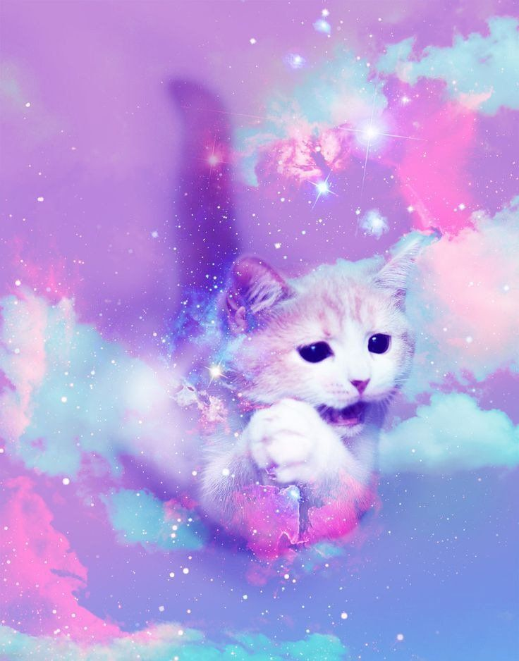 Pin By Bruja Kawaii Blog On Pastel Goth Cats