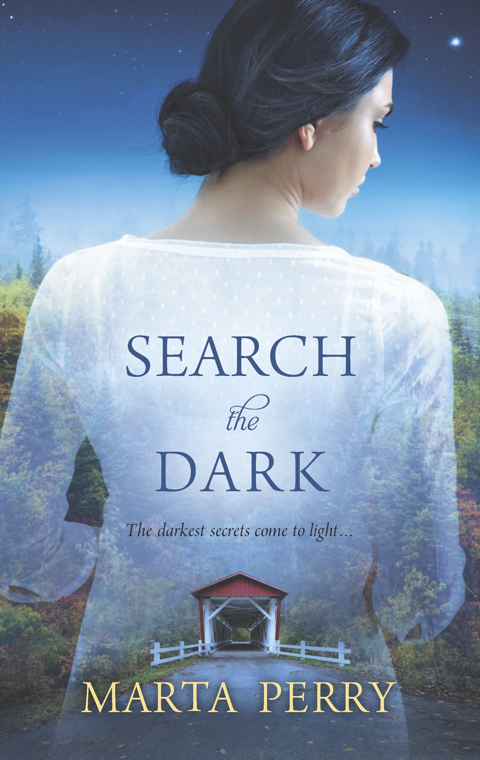 Search the Dark by Marta Perry Amish suspense