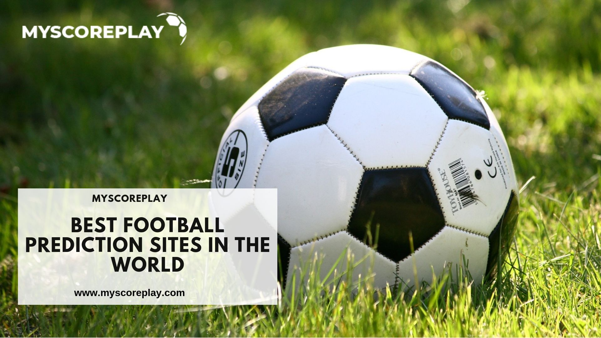Welcome to Myscoreplay is best football prediction site in the world