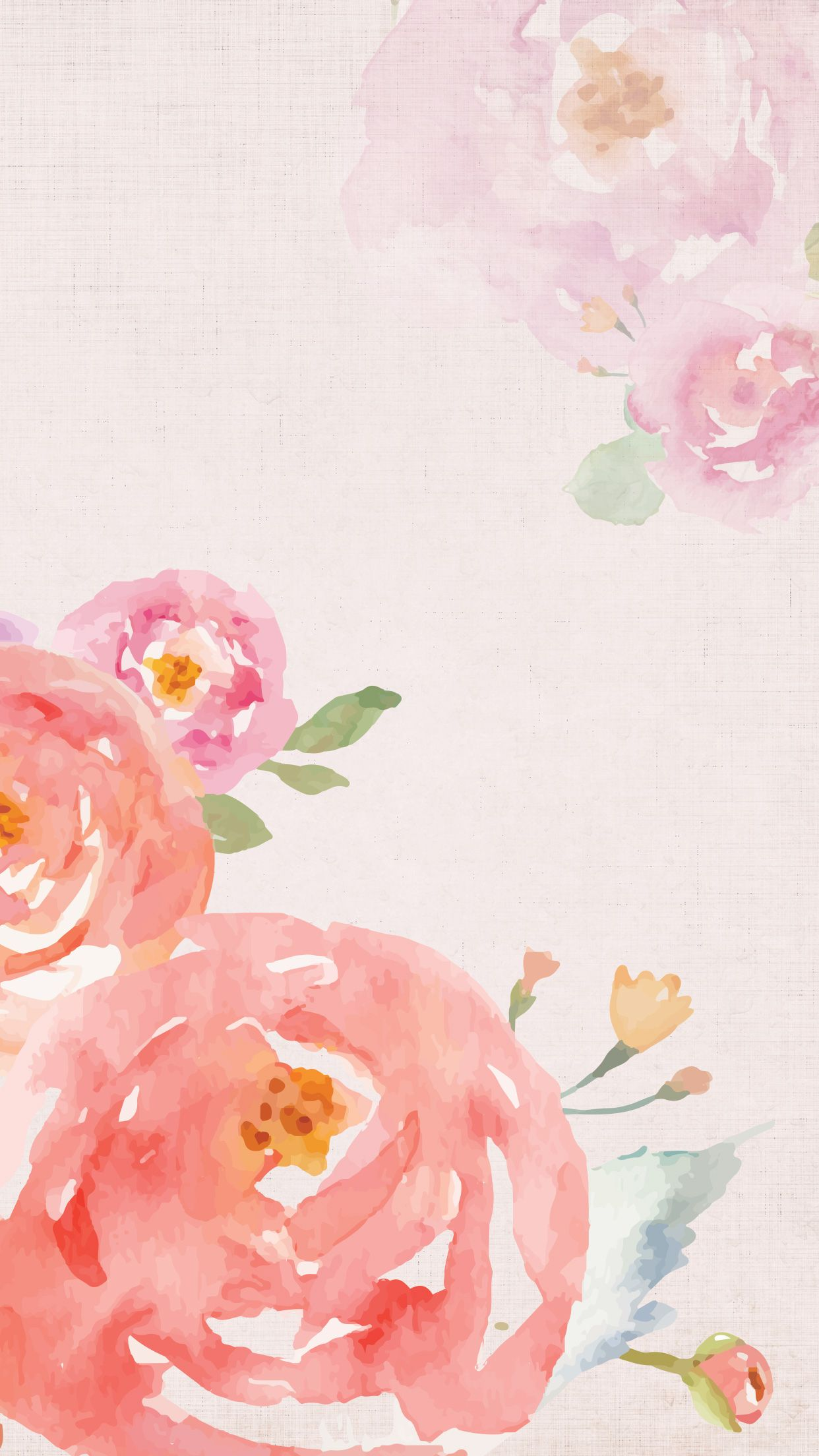 Floral Pink Roe Phone Background Watercolor Wallpaper Iphone