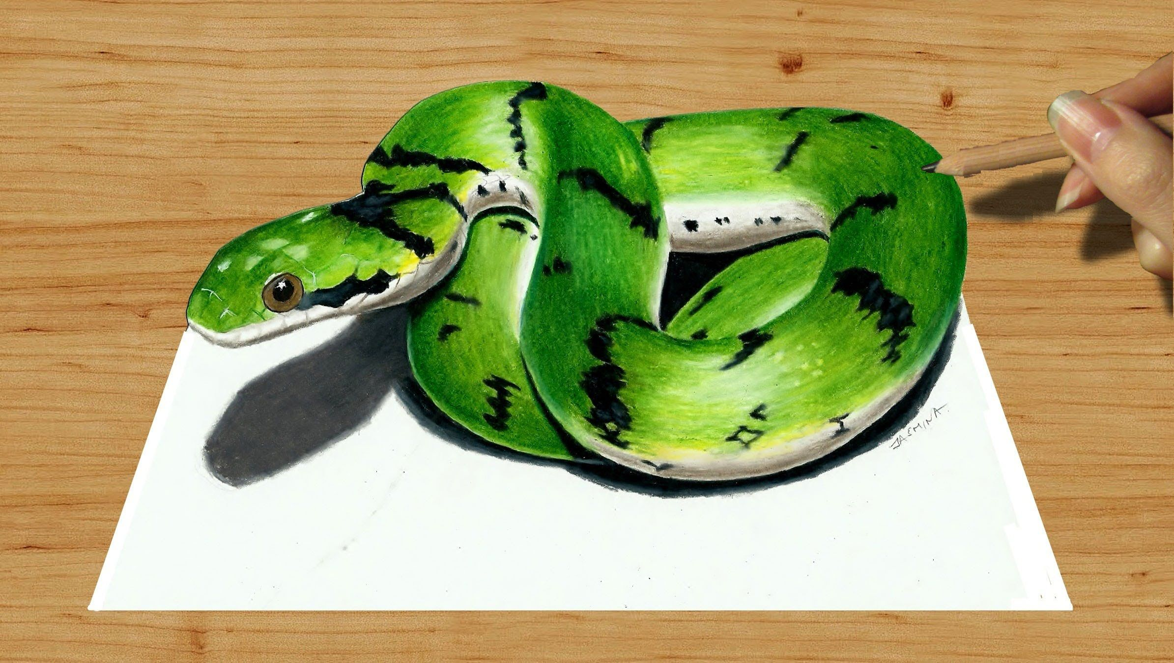 3d Colored Pencil Drawing Cute Green Snake Speed Draw Jasmina