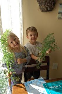 Give your kids their own large terracotta pot for their own gardening adventures!