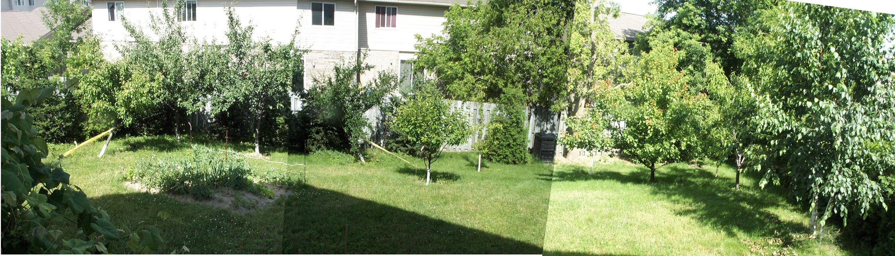 Superieur Backyard Fruit Trees