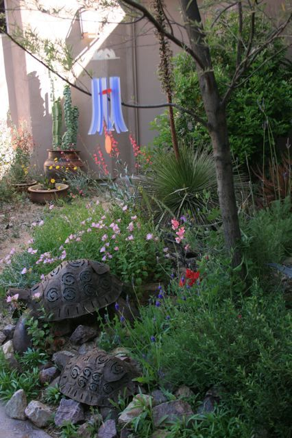 Gallery Cesar Mazier Landscaping Consulting Cesar Mazier Landscaping Consulting Plants Garden Landscaping Landscape