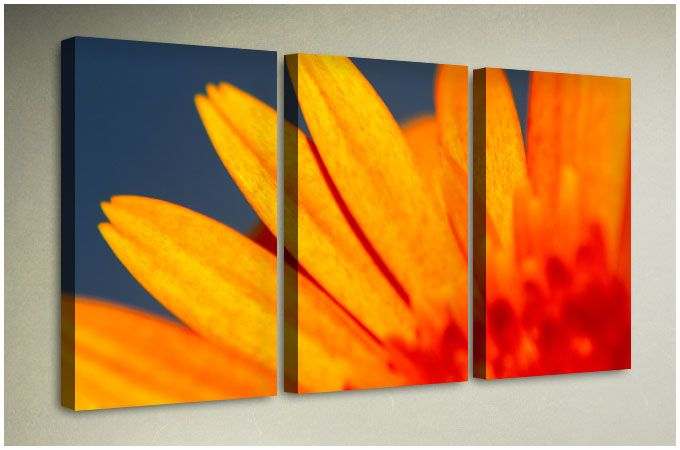 Our museum quality printer can guarantee exceptional and beautiful multiple canvas prints each multiple canvas