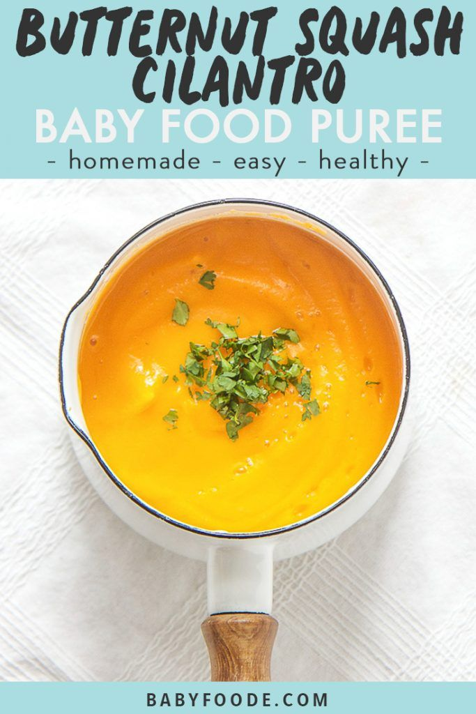 Butternut Squash + Cilantro Baby Food Puree (Stage 1) - Baby Foode