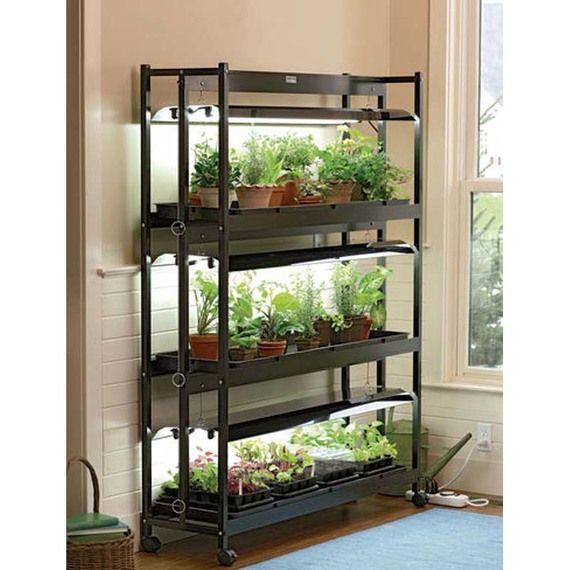 Pin By Khalid On Ideal Kitchen Indoor Grow Lights Garden Shelves Indoor Vegetables