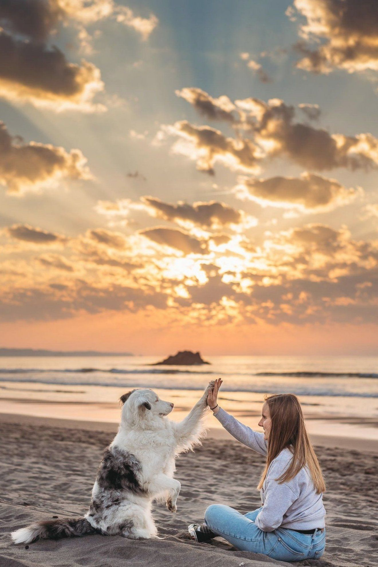 Fotos de pareja con perro en la playa   Elena S  Mu  oz Fotograf  a   Sesi  n de fotos de pareja con su mascota   Oviedo  Gij  n  Avil  s  Asturias  Santander  Cantabria
