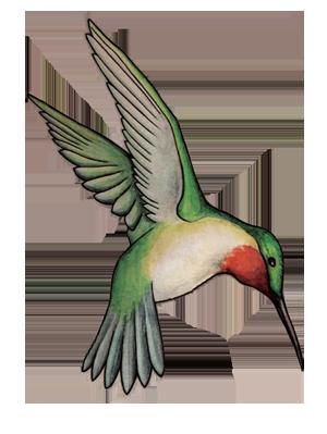 small hummingbird tattoo clip art