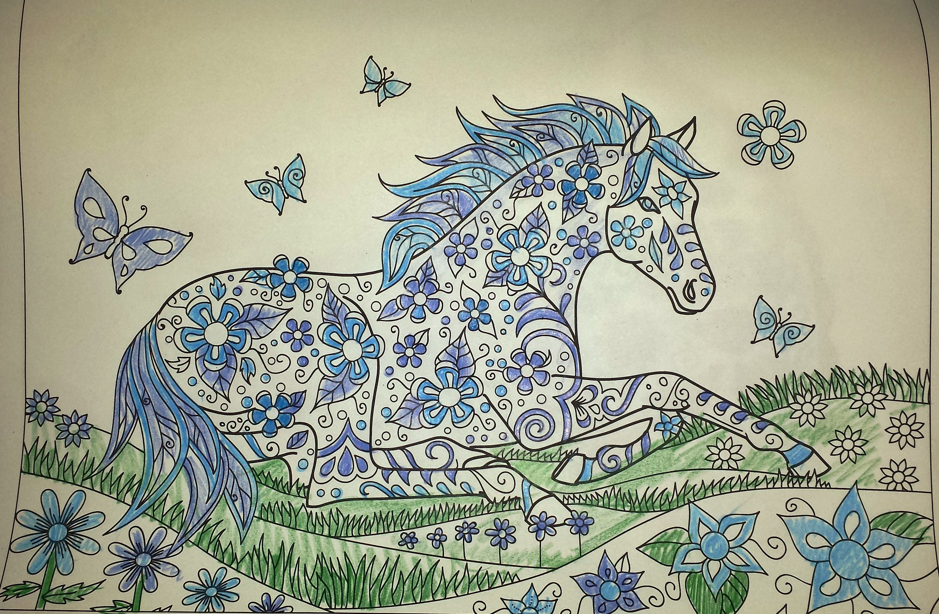 Horse Coloring Pages Just quickly colored this to help sleep