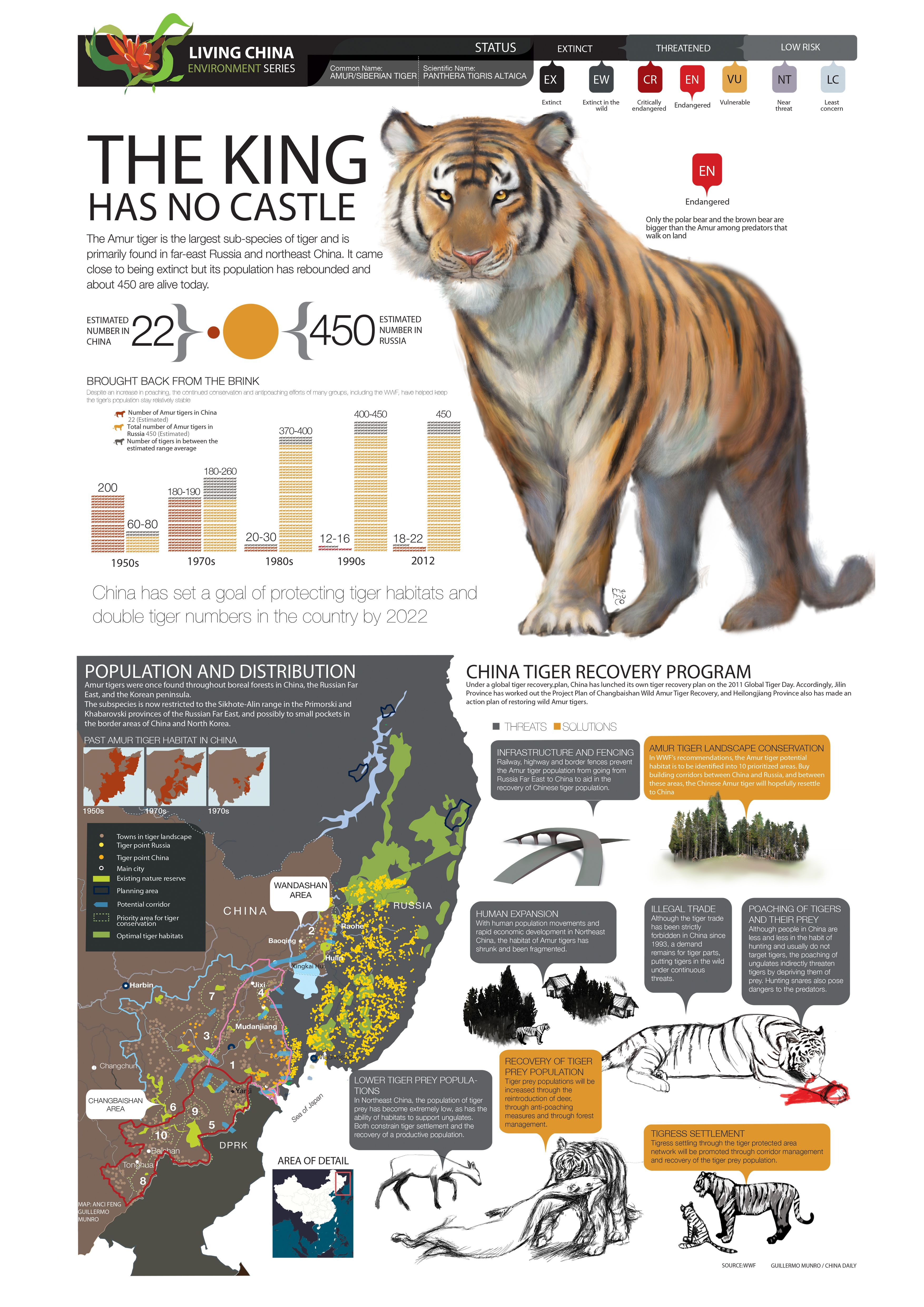 The king has no castle in 2020 Tiger facts, Tiger