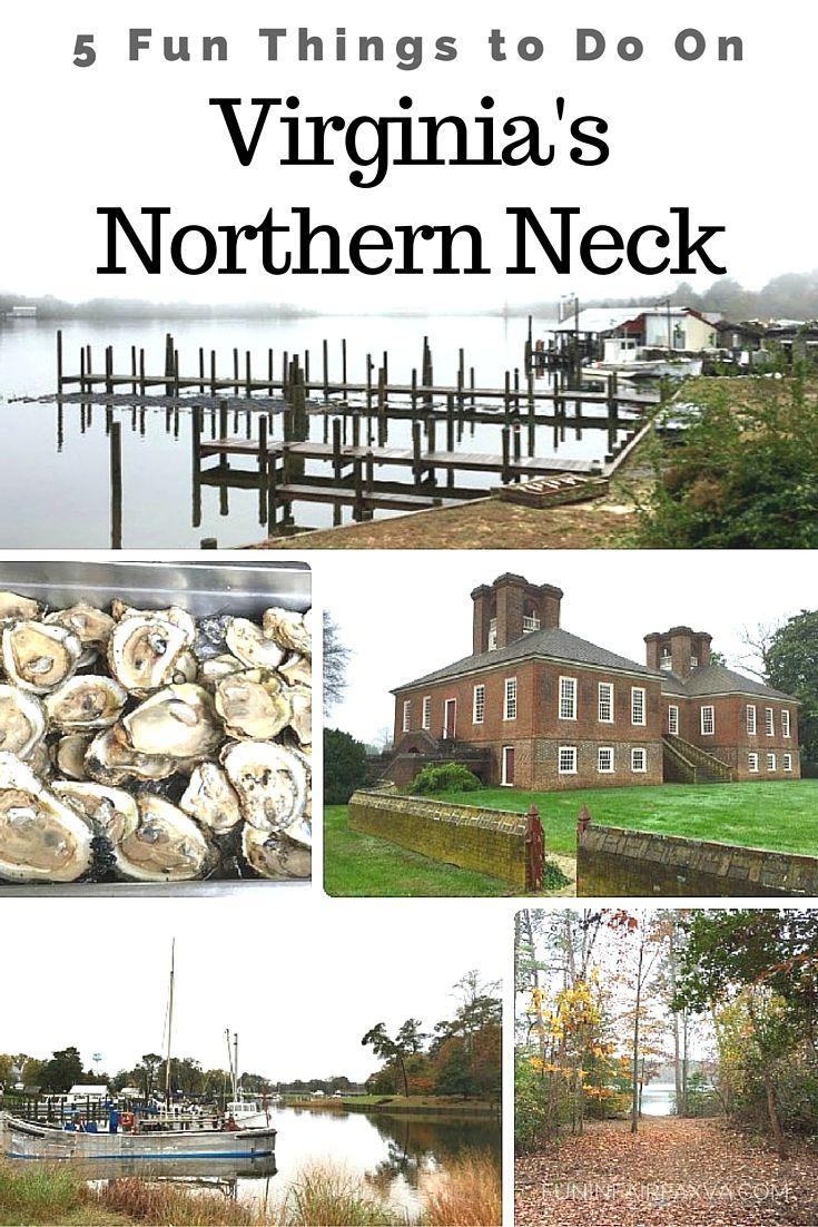 5 Fun Things To Do On Virginias Northern Neck Virginia
