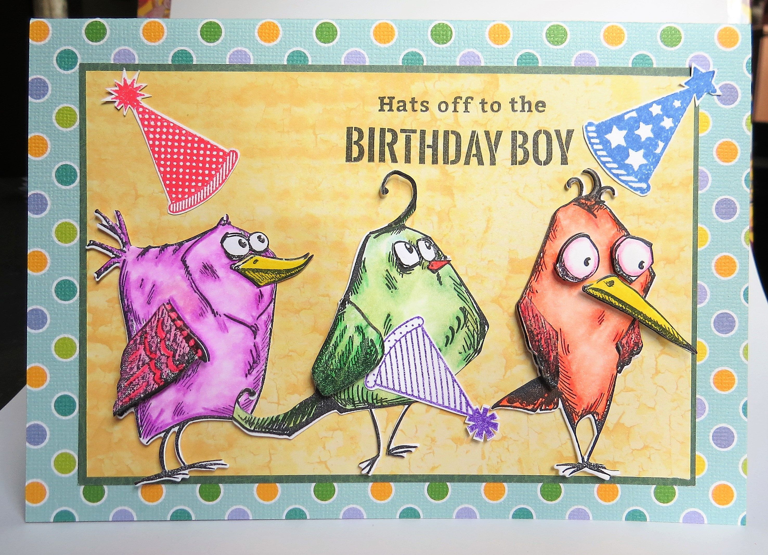 Goofy Birds Birthday Boy Card Funny Hats Off To Girl Silly Colorful Bird For Adults Kids Co Worker Friend By ACardOccasion