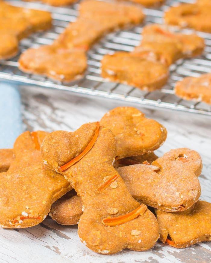 Easy No Bake Peanut Butter Pumpkin Dog Treats Dog Biscuit
