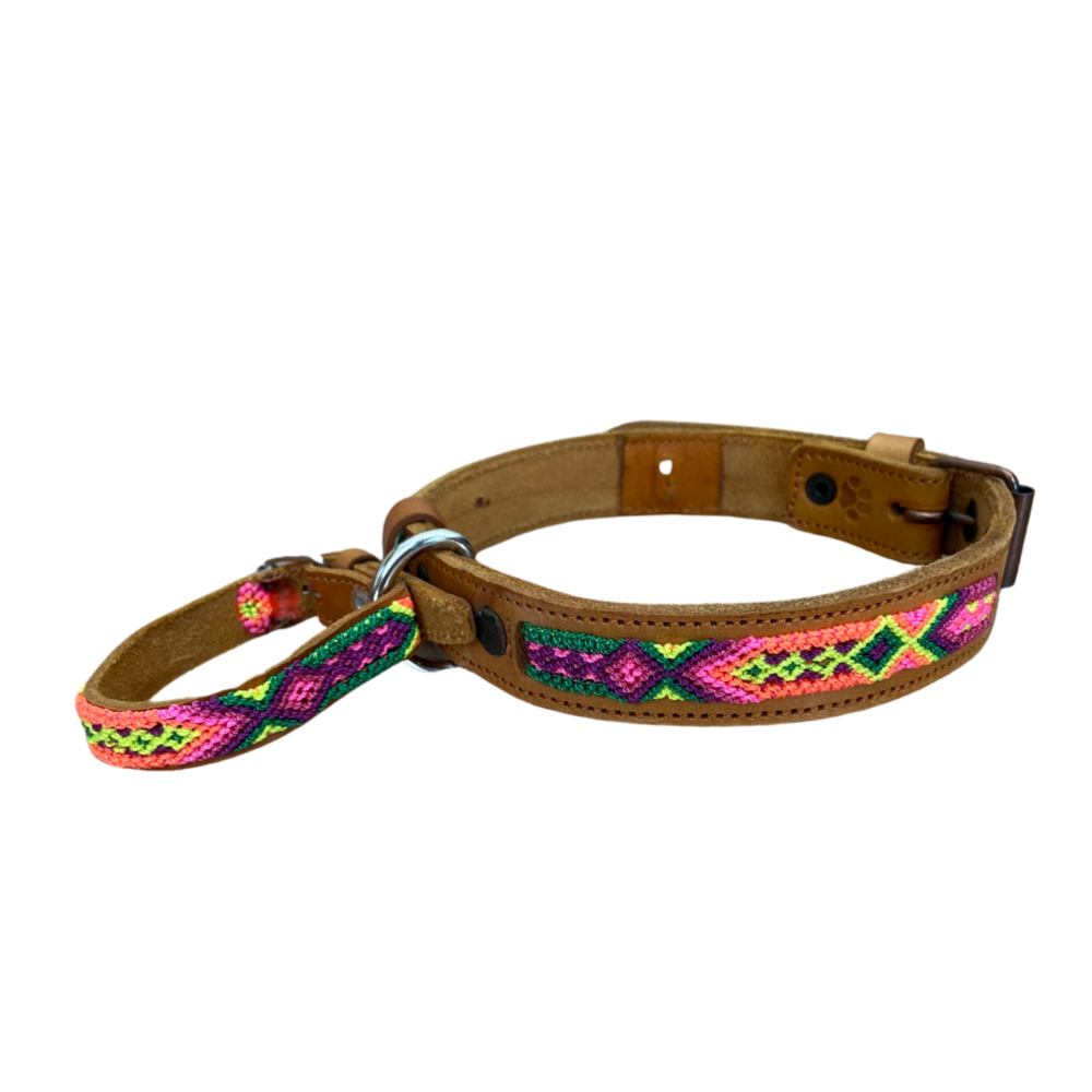 Friendship Dog Collar Bracelet Medium Leather Collar Dog Collar Beautiful Leather