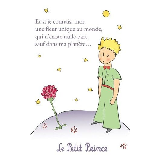 Image Result For The Little Prince The Little Prince Pinterest