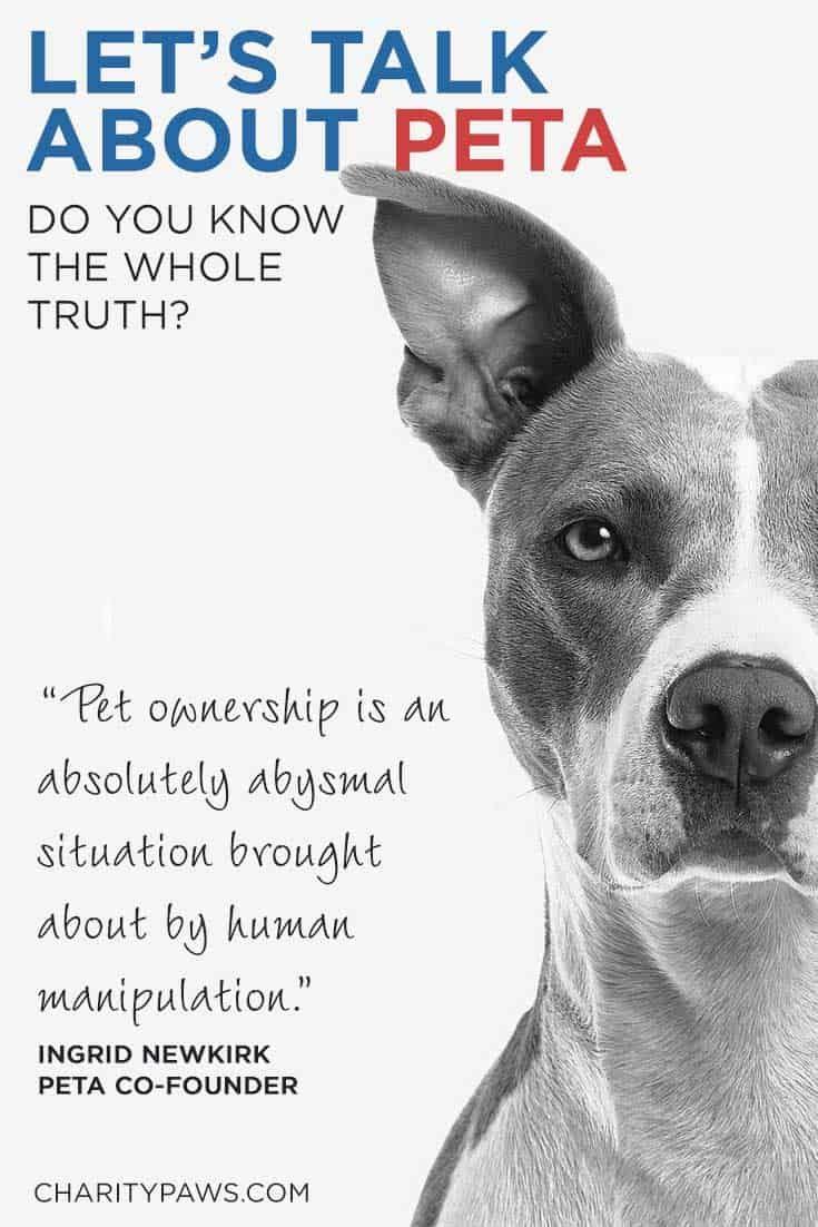 Let S Talk About Peta Peta Pet Organization Animal Welfare