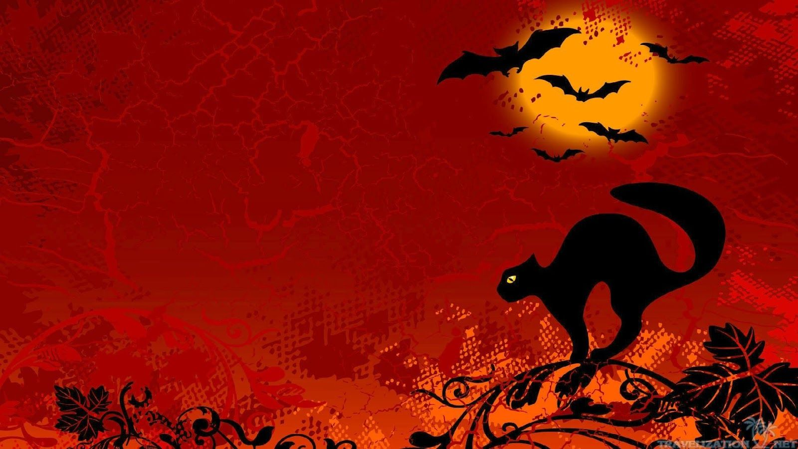 1080p Hd Halloween Cat Wallpaper High Quality Desktop Iphone And Android Background And Wallpaper Ani Halloween Cat Black Cat Halloween Halloween Graphics