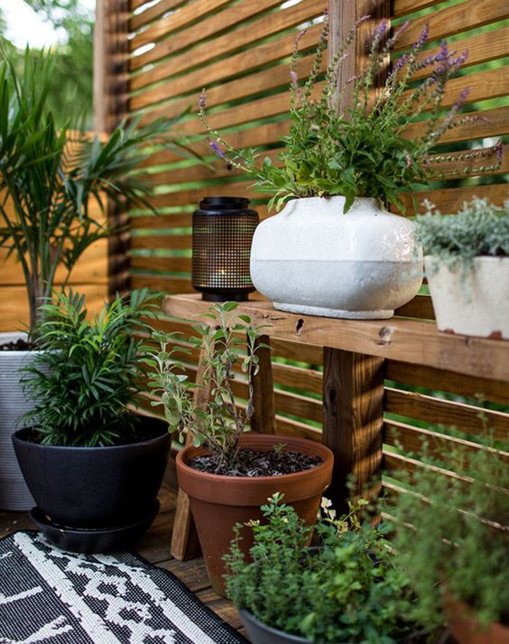 11 Chic Ways To Make Your Yard More Private Backyard Privacy Diy Privacy Fence Backyard Landscaping