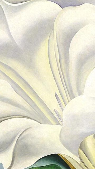Artistic wallpaper georgia o keefe white trumpet flower artistic wallpaper georgia o keefe white trumpet flower mightylinksfo
