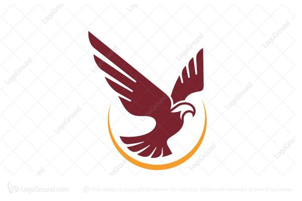 Exclusive Logo 24597 Flying Eagle Logo Do It Yourself Pinterest