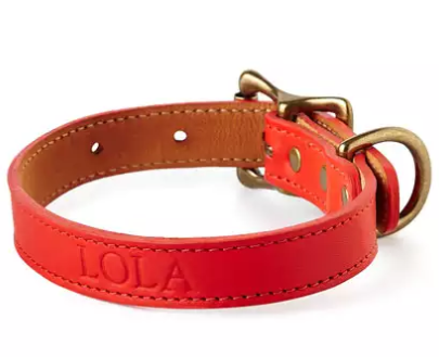 red personalized leather dog collar