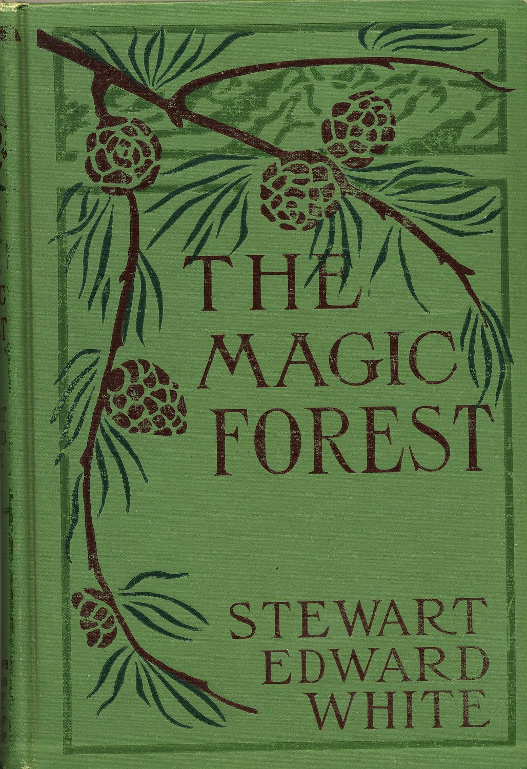 Beautiful Book Cover Names ~ The magic forest by stewart white vintage children s