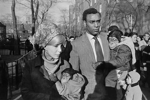 5.18.12 Garry Winogrand, 'Central Park Zoo, New York City, From the Fifteen Photographs Portfolio', 1964