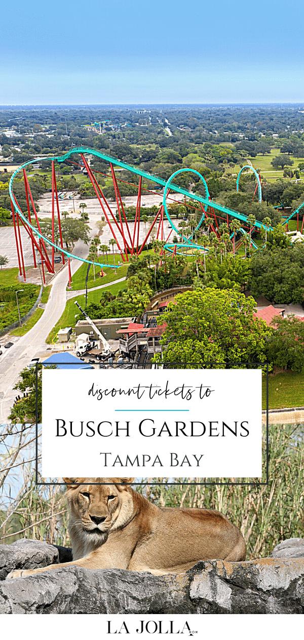 73980b994b63041d856f79b551fd121f - Buy One Get One Free Busch Gardens Tampa