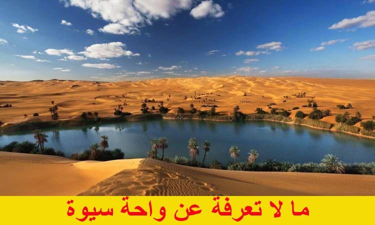 ما لا تعرفة عن واحة سيوة Siwa Oasis Wonders Of The World Desert Oasis