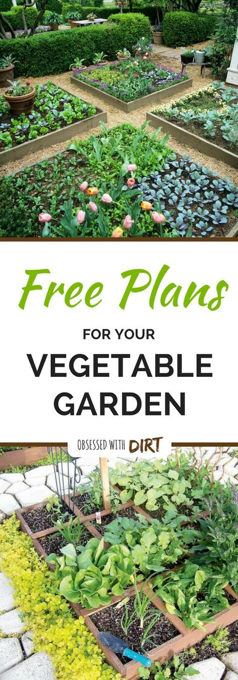 Four super easy vegetable garden layouts. There's one for ...