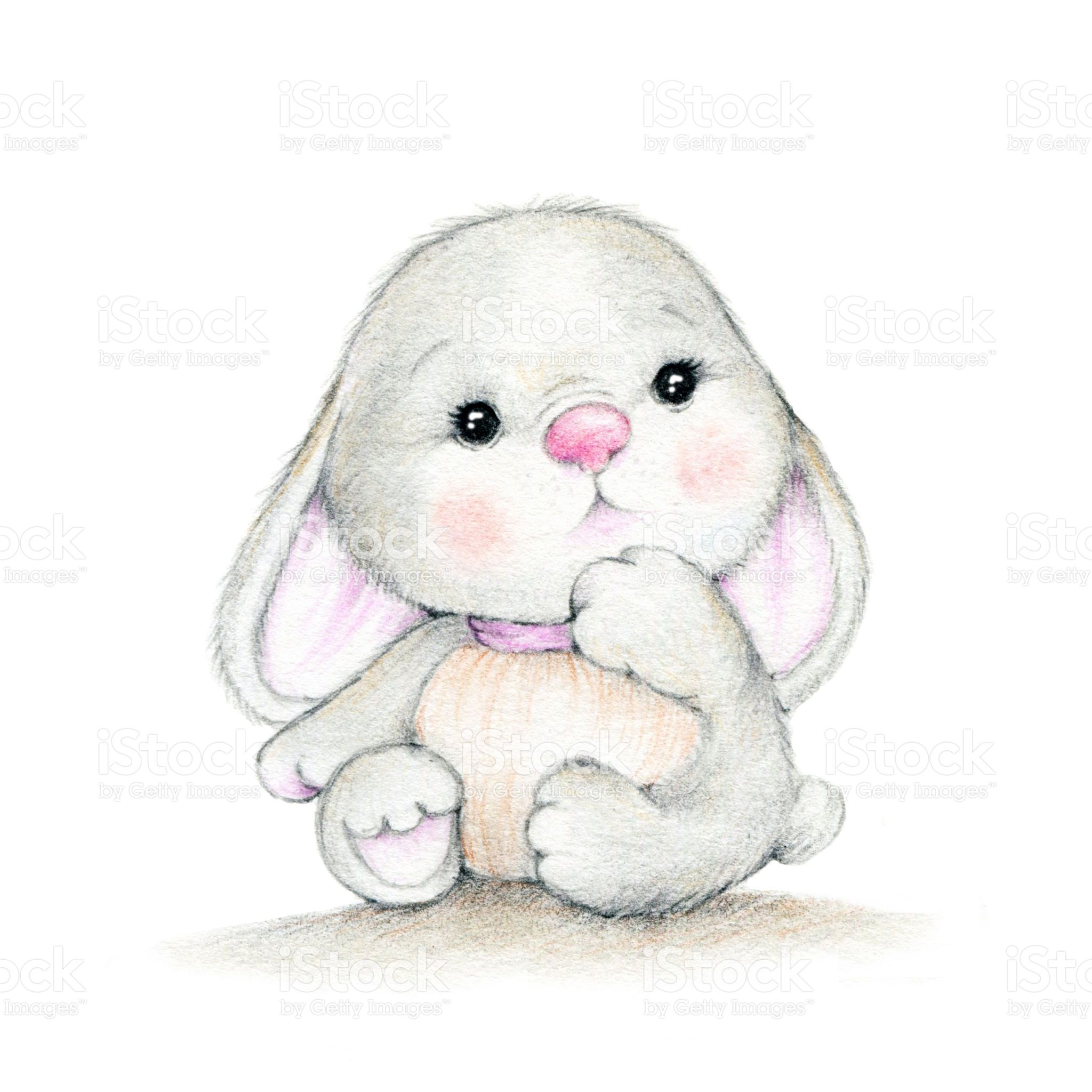 Cute bunny on a white background