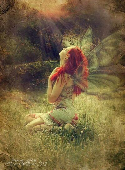Meadow Fairy Basking in the Sun
