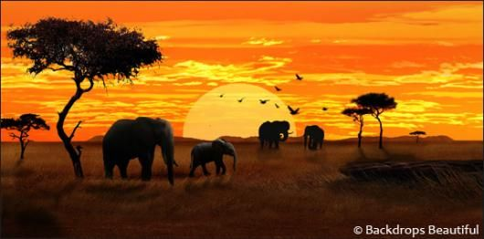 Cotton Canvas Wall Art Picture Print ALL SIZES Kilimanjaro African sunset