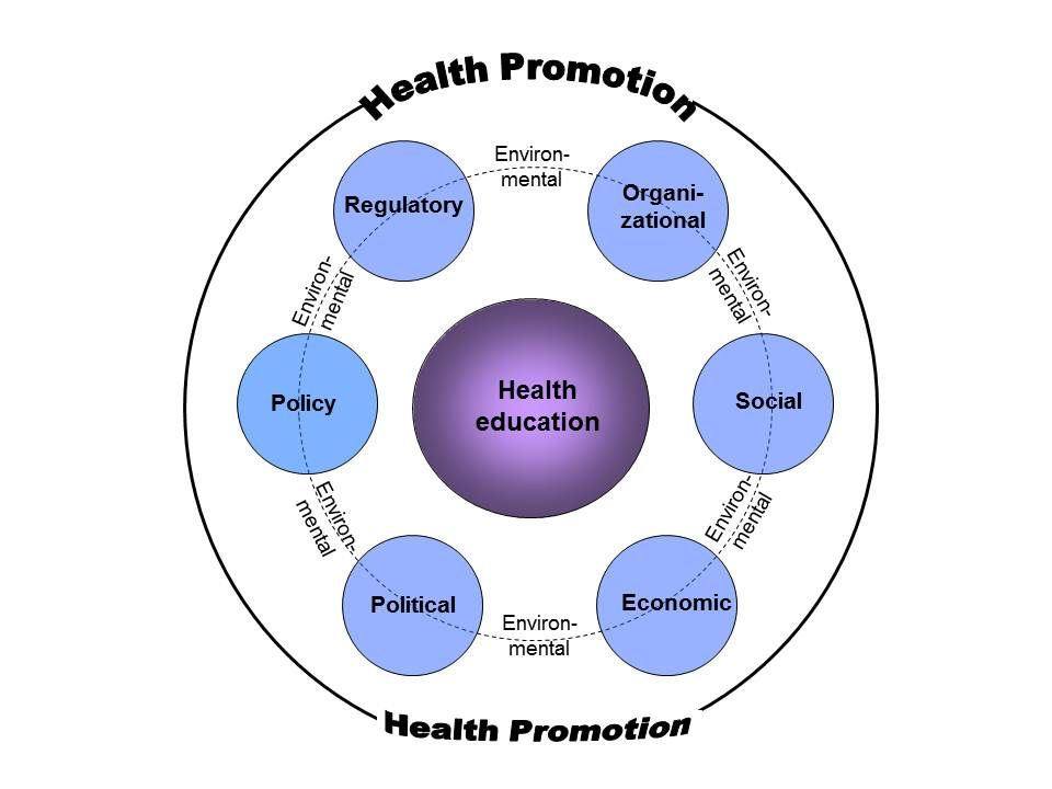 What Are Health Health Education And Health Promotion Hep Health Education And Promotion Health Promotion What Is Health Health Education
