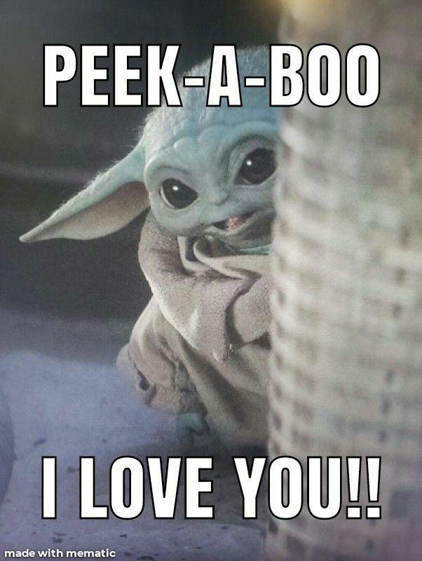 Pin By Marcela Miranda On Funnies In 2020 Yoda Funny Yoda Meme Star Wars Humor