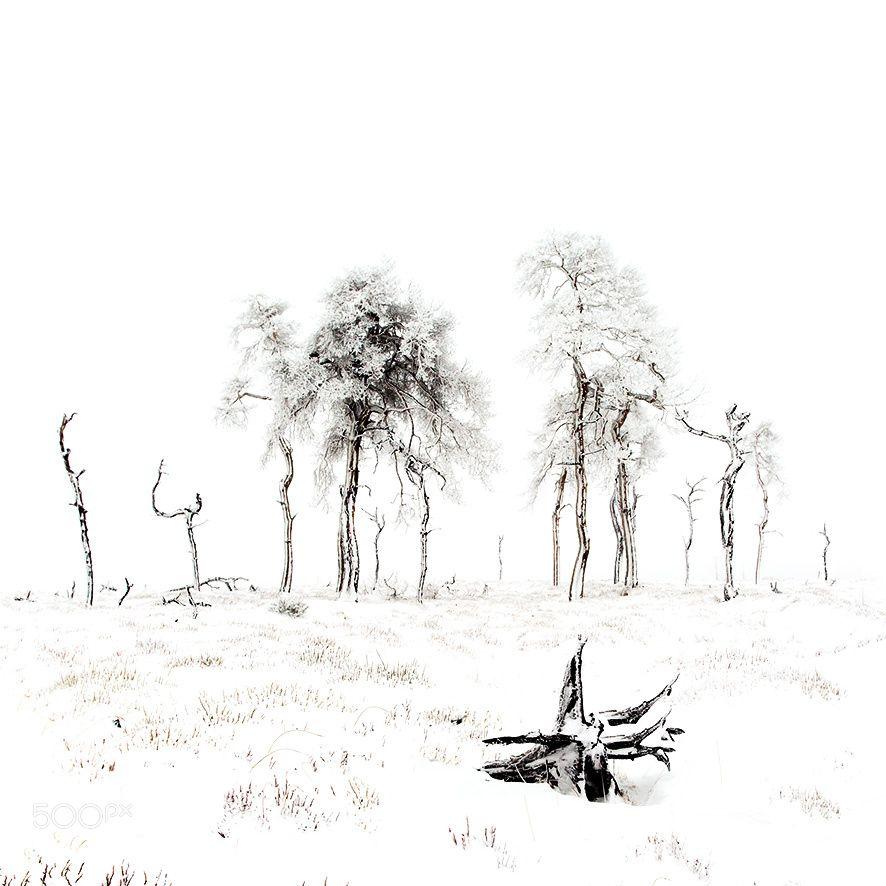 Noir flohay by guybronlet #Landscapes #