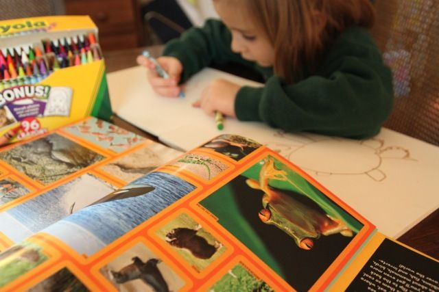 book review National geographic animals, Arts and crafts