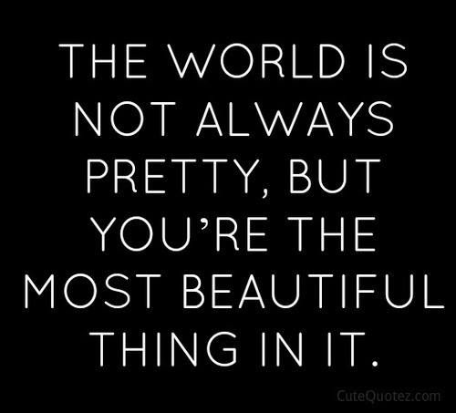 Refresh Quotes: The Most Beautiful Creature I've Ever Seen In My Life