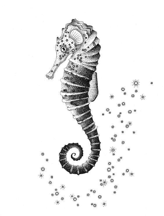 Résultats de recherche d'images pour «gravure sur bois meduse hippocampe»