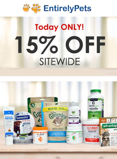 15 Off Sitewide With Images Medication For Dogs Pet