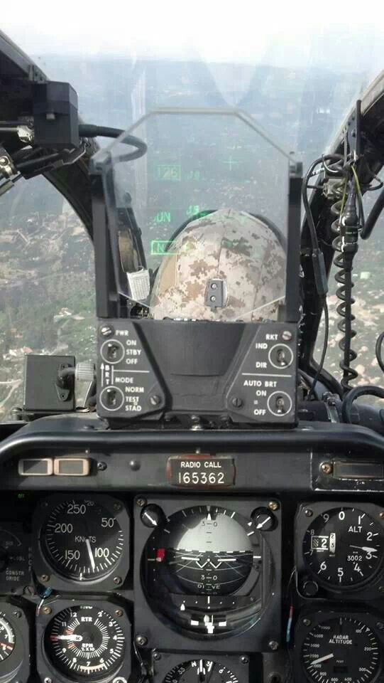 View from a Cobra!
