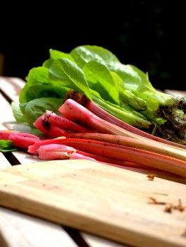 Image result for Sweet 'N Sour Rhubarb And Spinach Salad
