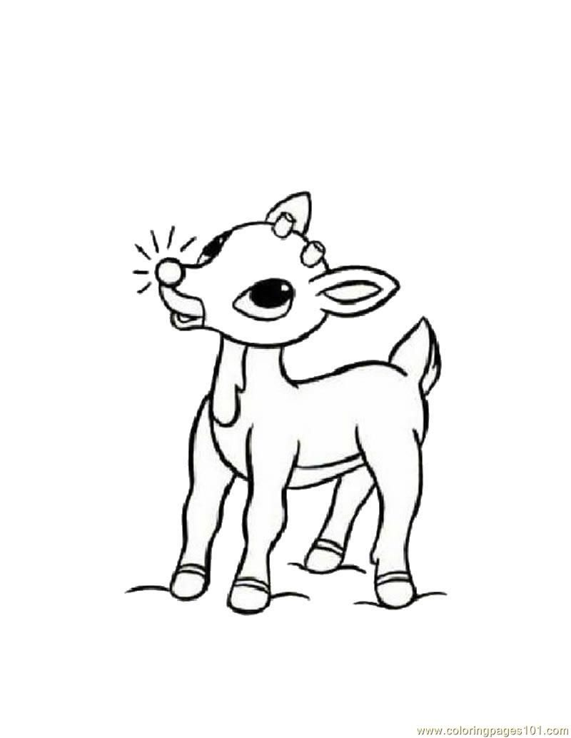 Coloring Pages Baby Deers Mammals